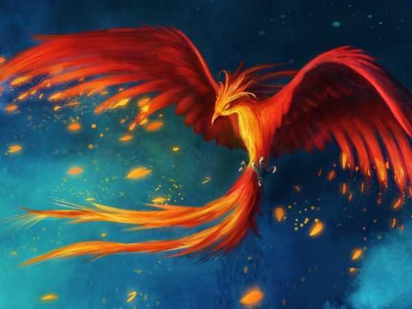 Феникс – птица