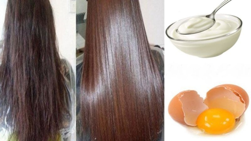 Маски из яиц для жирных волос