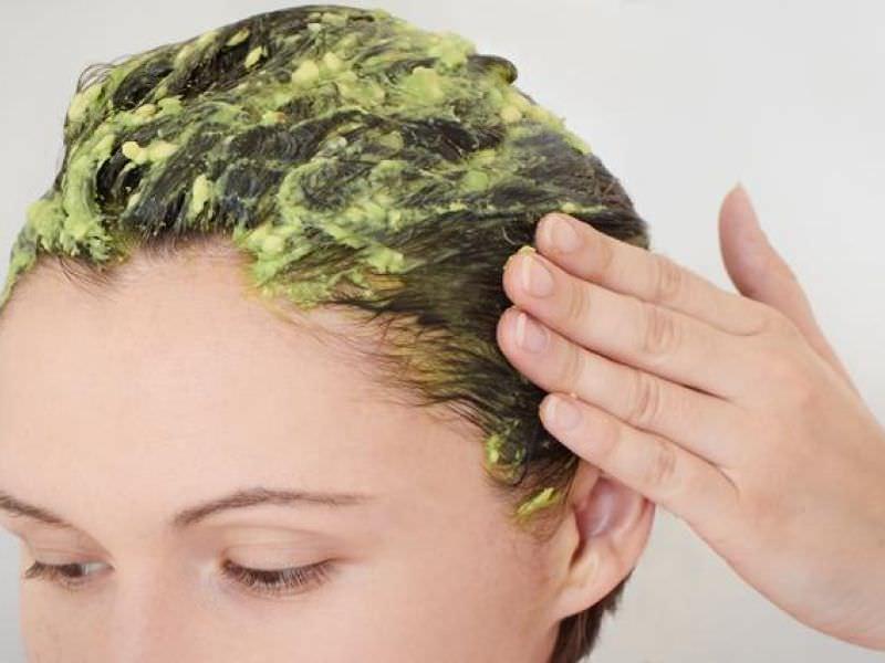 крапива полезные свойства для волос