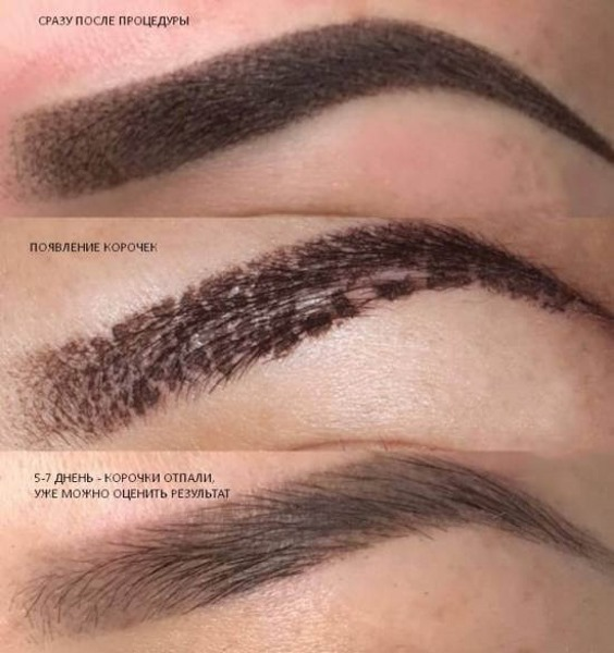 Пудровое напыление бровей. Что это, как делают, цена перманентного макияжа, микроблейдинга, татуажа. Отзывы