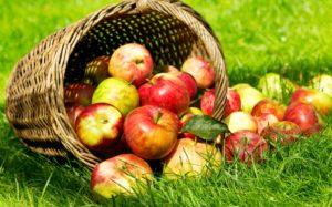 19 августа - Яблочный Спас и особенные приметы