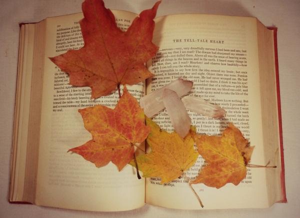 rozy-iz-klenovyh-listev-1 Как сделать цветы из листьев руками. Розы из кленовых листьев своими руками пошагово
