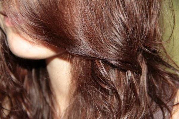 Каштановый оттенок волос от хны