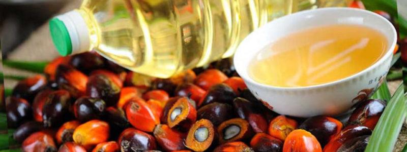 Неужели пальмовое масло вызывает рак